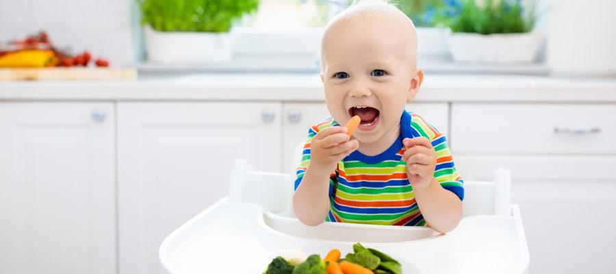 La alimentación en el primer año de vida