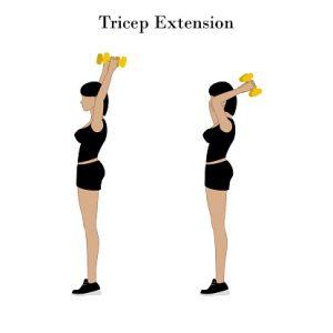 Extensión de tríceps con mancuernas